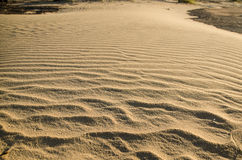 текстура песка предпосылок идеально Стоковое Изображение RF