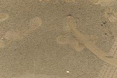 Текстура песка пляжа после дождя Стоковое Изображение