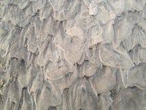 Текстура песка пляжа Стоковые Фотографии RF