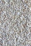 текстура песка стоковые фотографии rf