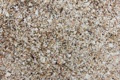 текстура песка dof предпосылки отмелая Стоковая Фотография
