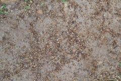 Текстура 4691 - песочная земля Стоковые Изображения