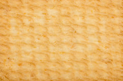 Текстура печенья Стоковые Изображения
