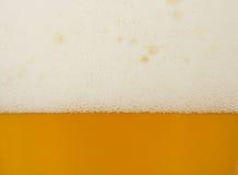 Текстура пива Стоковая Фотография RF