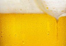 Текстура пива Стоковая Фотография