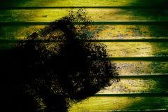 Текстура планки деревянной скамьи Grunge для вебсайта или мобильных устройств, элемента дизайна Стоковая Фотография