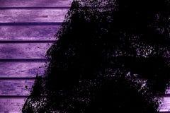 Текстура планки деревянной скамьи Grunge ультра фиолетовая для вебсайта или мобильных устройств, элемента дизайна Стоковое Изображение