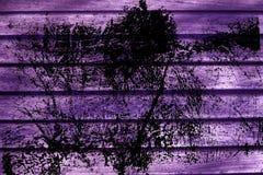 Текстура планки деревянной скамьи Grunge ультра фиолетовая для вебсайта или мобильных устройств, элемента дизайна Стоковая Фотография RF