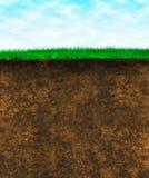 текстура поверхности почвы зеленого цвета травы Стоковая Фотография RF