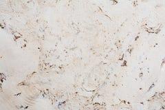 Текстура поверхности пробковой доски деревянной, естественной деревянной декоративной панели Стоковое Изображение RF