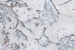Текстура поверхности пробковой доски деревянной, естественной деревянной декоративной панели Стоковые Изображения