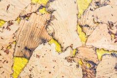 Текстура поверхности пробковой доски деревянной, естественной деревянной декоративной панели Стоковая Фотография