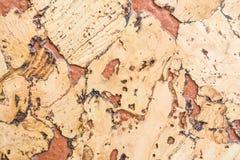 Текстура поверхности пробковой доски деревянной, естественной деревянной декоративной панели Стоковые Фото