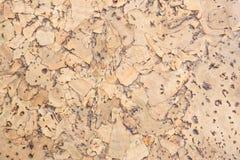 Текстура поверхности пробковой доски деревянной, естественной деревянной декоративной панели Стоковое Фото