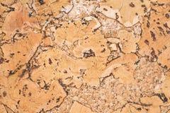 Текстура поверхности пробковой доски деревянной, естественной деревянной декоративной панели Стоковое фото RF
