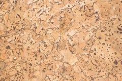 Текстура поверхности пробковой доски деревянной, естественной деревянной декоративной панели Стоковые Фотографии RF
