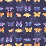 текстура покрашенная бабочками Стоковая Фотография