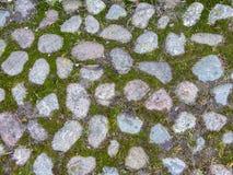Текстура покрытой мх каменной мостоваой Справочная информация стоковые фото