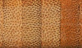 Текстура поперечного сечения bamboo доски волокна Стоковая Фотография RF