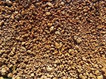 Текстура почвы Стоковое Фото