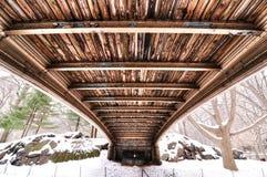 Текстура под мостом Central Park стоковые изображения