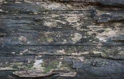 Текстура пользы расшивы деревянной как естественная предпосылка Стоковая Фотография RF