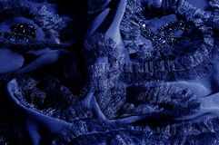 Текстура, предпосылка, картина С зашитыми картинами bluets Silk cha стоковое изображение rf
