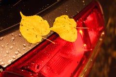 Текстура предпосылки, картина Размеры автомобиля габаритно стоковое изображение