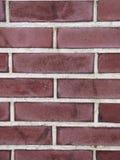 Текстура предпосылки кирпичной стены - фото запаса Стоковые Фото