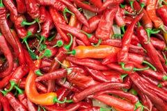 Текстура предпосылки красных перцев красного перца, горячего красного перца, красного chili, приправляя паприки, пламенистый крас Стоковое Изображение RF