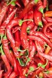 Текстура предпосылки красных перцев красного перца, горячего красного перца, красного chili, приправляя паприки, пламенистый крас Стоковая Фотография RF