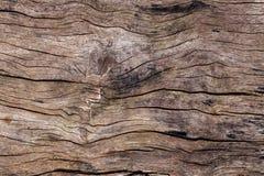 текстура предпосылки старая деревянная древесина текстуры для добавляет текст или работает Стоковые Изображения RF