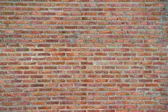 Текстура предпосылки стены цемента кирпича Стоковое Фото