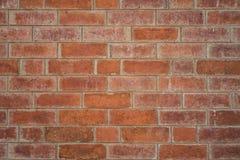 Текстура предпосылки стены цемента кирпича Стоковые Фото