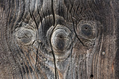 Текстура предпосылки Брайна деревянная Стоковое фото RF