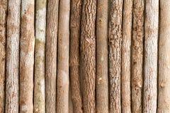 Текстура предпосылки естественных деревянных crayons карандаша Стоковая Фотография RF