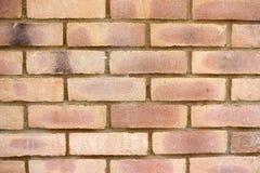 Текстура предпосылки кирпичной стены стоковое фото rf