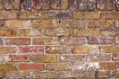 Текстура предпосылки кирпичной стены стоковое фото