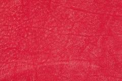 текстура предпосылки кожаная красная Стоковое Фото