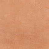 Текстура предпосылки кожи оленей Стоковая Фотография RF