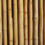 Bamboo предпосылка Стоковые Фотографии RF