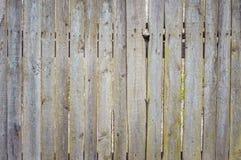 Текстура предпосылки доск старых загородки Стоковые Изображения