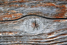 Текстура предпосылки пола старого амбара деревянная Стоковые Изображения RF
