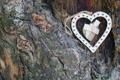 Текстура предпосылки ствола дерева сердца влюбленности Стоковые Изображения