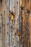 Текстура предпосылки стены амбара деревянная Стоковое Изображение