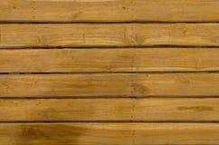 Текстура предпосылки цвета дуба деревянная Стоковые Изображения RF