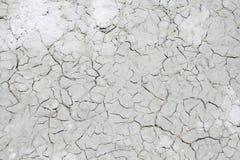 Текстура пустыни соли Стоковое Изображение