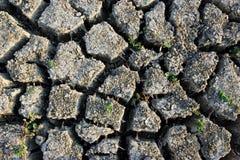 текстура района неорошаемого земледелия Стоковые Фотографии RF