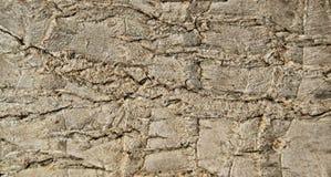 Текстура расшивы, деталь стоковое фото