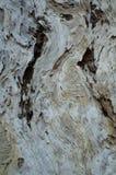 текстура расшивы предпосылки естественная Стоковая Фотография